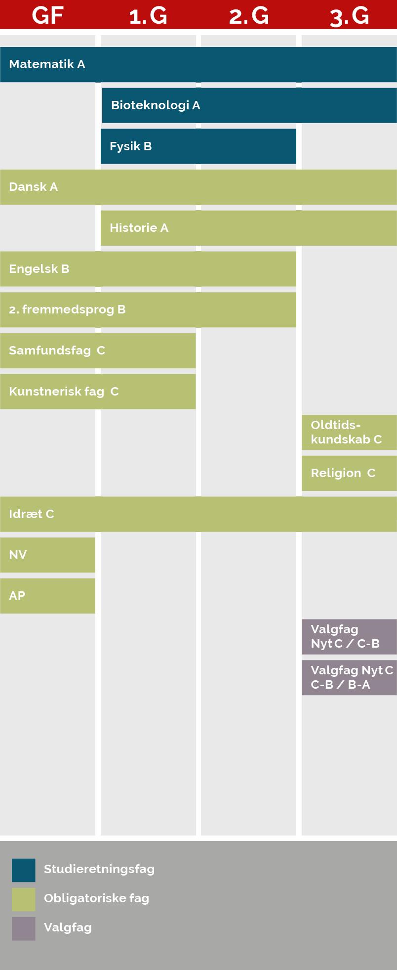 En grafisk model der viser, hvornår du har hvilke fag på denne studieretning. Af modellen fremgår følgende:  Matematik på A-niveau, som er et studieretningsfag, har du både i grundforløb, 1g., 2.g og 3.g. Bioteknologi på A-niveau, som er et studieretningsfag, har du i 1.g, 2.g og 3.g. Fysik på B-niveau, som er dit tredje studieretningsfag, har du i 1.g og 2.g Dansk på A-niveau, som er et obligatorisk fag, har du både i grundforløb, 1.g, 2.g og 3.g. Historie på A-niveau, som er et obligatorisk fag, har du i 1.g, 2.g og 3.g. Engelsk og 2.  fremmedsprog på B-niveau, som begge er obligatoriske fag, har du i grundforløb, 1.g og 2.g Samfundsfag og kunstnerisk fag på C-niveau, som begge er obligatoriske fag, har du i grundforløb og 1.g Oldtidskundskab og Religion på C-niveau, som er obligatoriske fag, har du i 3.g Idræt på C-niveau, som er et obligatorisk fag, har du i grundforløb, 1.g, 2.g og 3.g. NV og AP, som er obligatoriske fag, har du kun i grundforløb. I 3.g har du samlet to valgfag, som enten er et nyt fag på C-niveau eller et C-niveau-fag, som du hæver til B-niveau eller et B-niveau-fag du hæver til A-niveau.